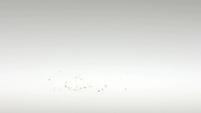 spices : Super Slow Motion Stevia Falling on White Background