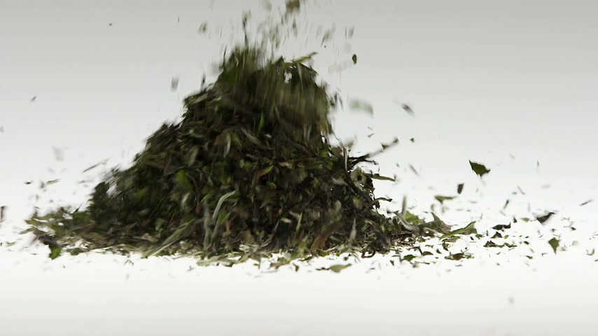 herbal : Super Slow Motion Green Tea Falling on White Background