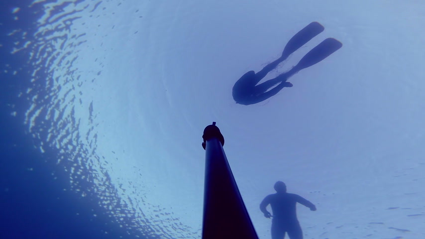 dengeleme : Camera Falling Down and Showing 3 Divers on the surface