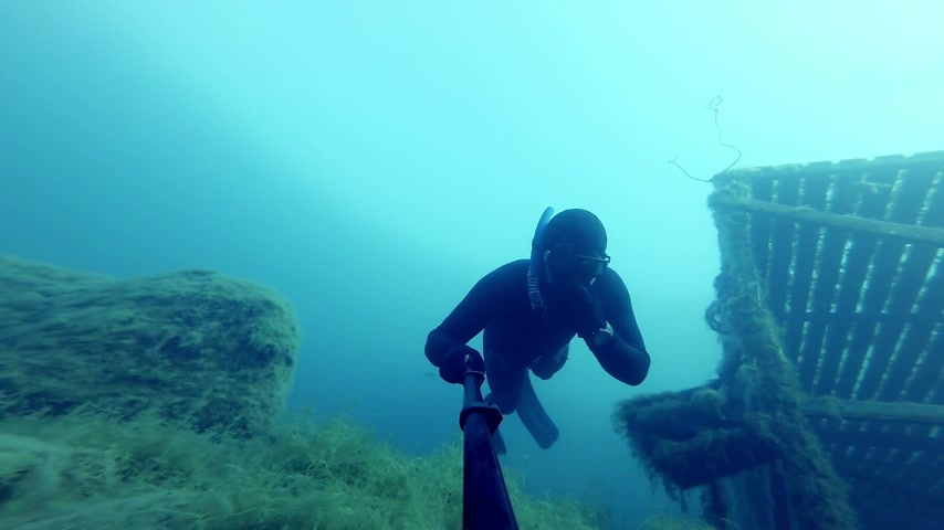 dengeleme : Freediver Freefalling into a Deep Cliff 20m Underwater Stok Video
