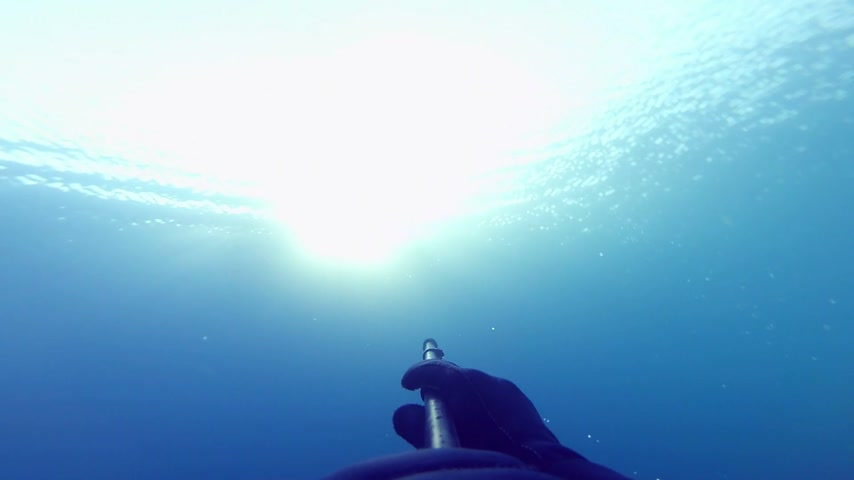 dengeleme : Freediver Showing the Amazing Rays of Sunlight from Underwater