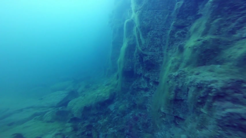 ploutve : Deep Freediver Exploring a side of a Underwater Cliff into a Quarry