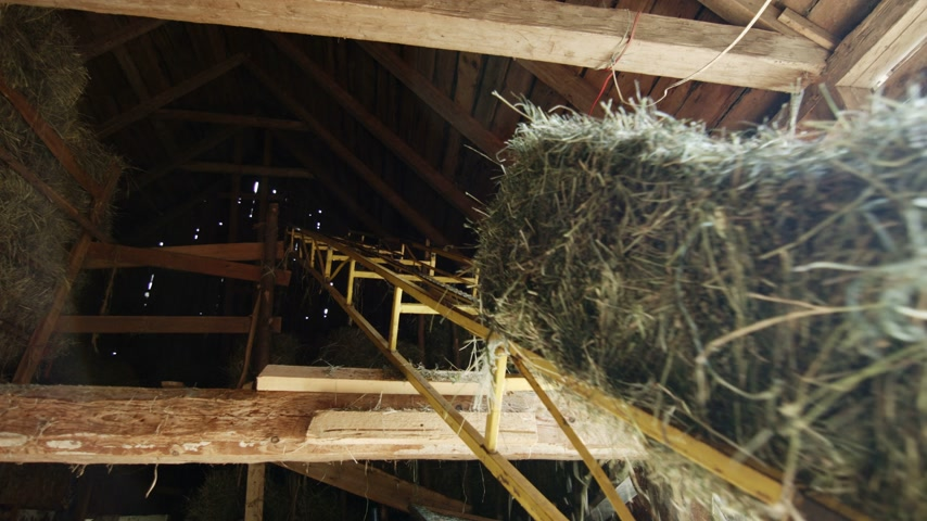 földműves : Its time to Do Hay and to Take in the Dry Haystacks bundles into the Second floor of the Barn using this Machinery Stock mozgókép