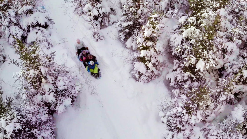 winter sport : Aerial Video van Familie Genieten Winter en Sliding in Nature Stockvideo