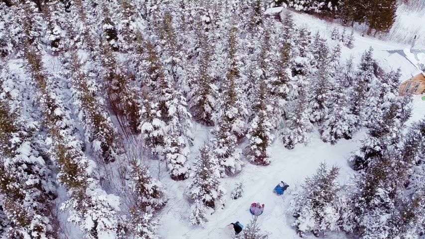 скат : Aerial Video of Family Enjoying Winter and Sliding in Nature