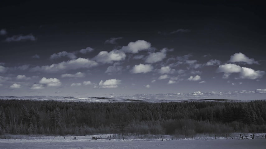 Infrared Timelapse or Rural Field and Forest Nature Landscape during Winter