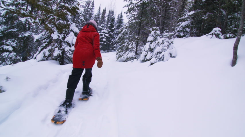 Steadicam Low Angle of Young Woman Walking with Snowshoes in Forest during Winter