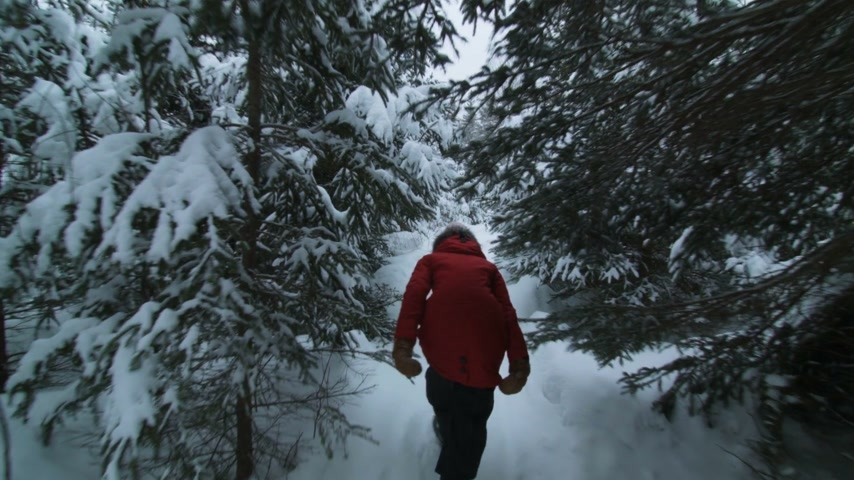 Steadicam Back View of Walking Woman in a Forest Trail during Winter