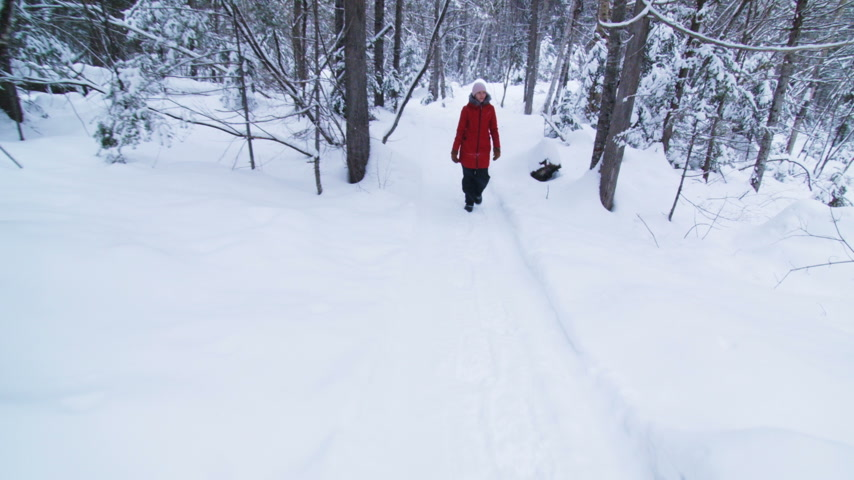 Steadicam Video of Young Woman Walking in Forest during Winter