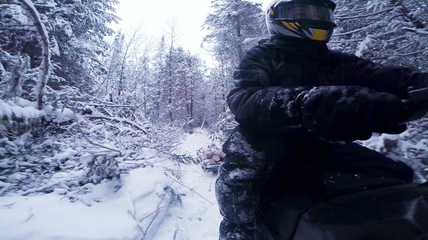 Fast Snowmobile Driver POV Side View in a Forest Path