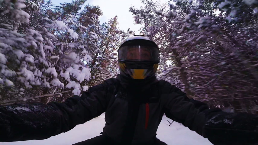 Closeup of a Fast Snowmobile Driver in Forest