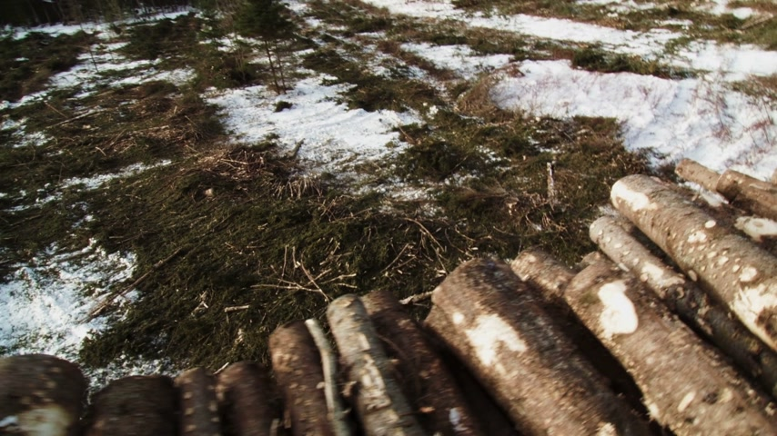 Forestry Theme - SteadyCam Panning Looking Down and on top of Huge Pile of Spruce and Pine Trees