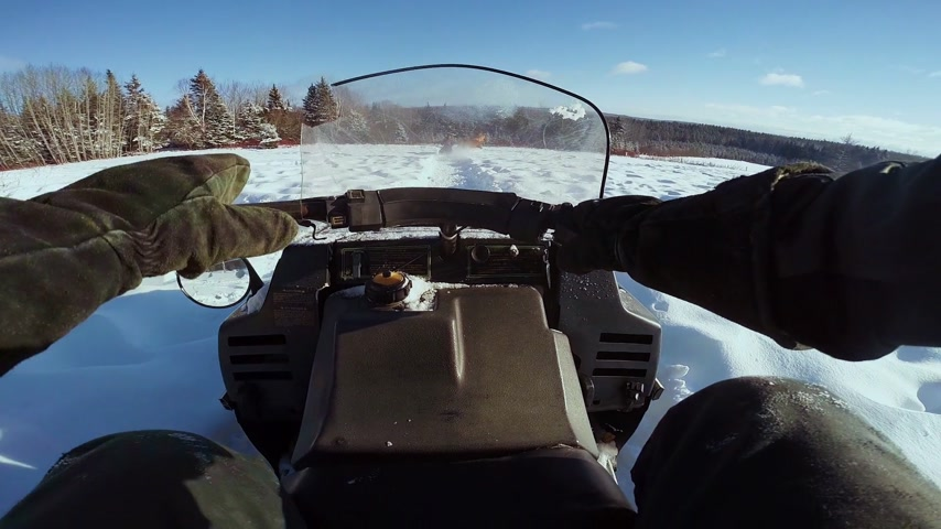 POV of Man Riding Snowmobile and Beautiful Wild Horses Running