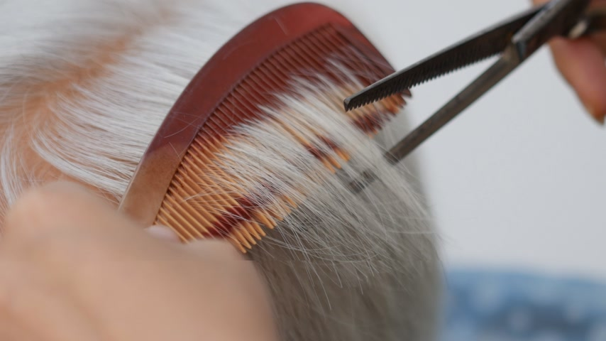cabelos grisalhos : Close-up Hair stylist cutting senior womans gray hair
