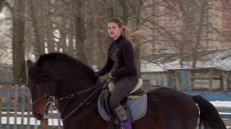 stallion : SLOW MOTION: A girl jockey fulfills riding on a horse. It performs a variety of sports movement and jumping. Training takes place in a small special paddock. A cloudy winter day. Stock Footage