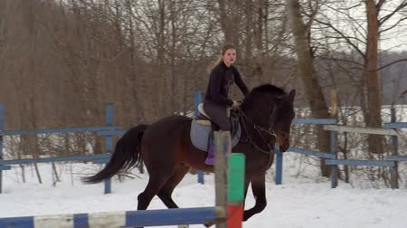 závodní dráha : SLOW MOTION: A girl jockey fulfills riding on a horse. It performs a variety of sports movement and jumping. Training takes place in a small special paddock. A cloudy winter day. Dostupné videozáznamy