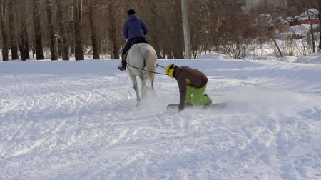 hřebec : SLOW MOTION: A girl galloping on a horse at a gallop. A horse is dragging a snowboarder guy on a rope. A snowboarder rides on a snowboard in snowdrifts. Girl jockey and guy snowboarder train in pairs. A sunny winter day.