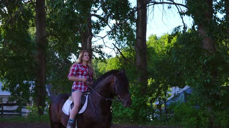 восхитительный : Young blonde woman takes a walk with his horse. Summer sunny evening.