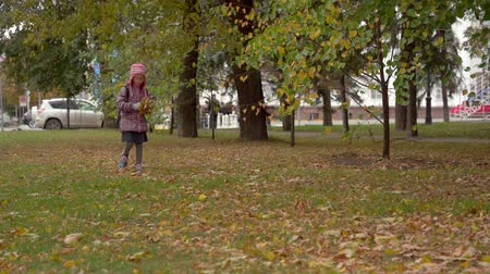 after school : After studying at school. Girl child schoolgirl collects autumn maple leaves in the park. Maple leaves are needed for girls crafts. Slow motion.