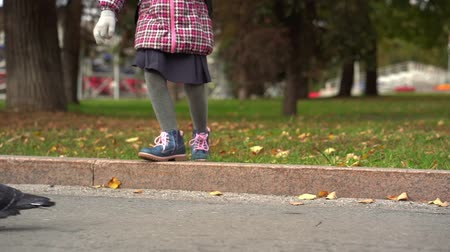 after school : After studying at school. Girl child schoolgirl playing with pigeons on the sidewalk. She runs after them, and they fly away from her. Slow motion. Stock Footage