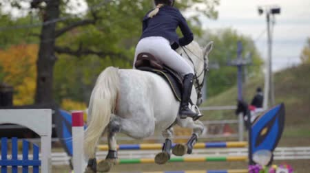 koń : SLOW MOTION: A woman jockey in a black and white suit on a horse makes a jump over the barrier. Competitions in equestrian sport. Wideo