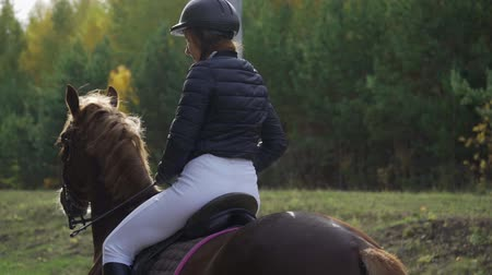 jazda konna : Portrait of a beautiful female jockey on a horse. Break between competitions. Slow motion. Wideo