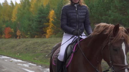 koń : A young woman riding a horse and riding a horse. The break between the races on equestrian sport. Slow motion.