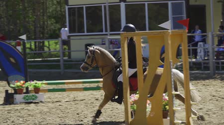 koń : SLOW MOTION: A young woman jockey on a small horse (pony) performs at equestrian competitions. Summer sunny day.
