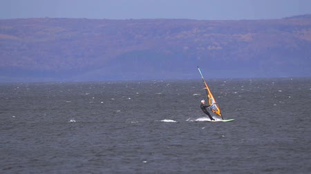 A male athlete is interested in windsurfing. He moves on a Sailboard on a large lake on an autumn day. Slow motion.