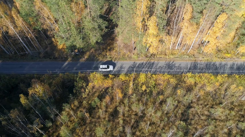 Aerial View Above Road in Forest in Fall With Cars.