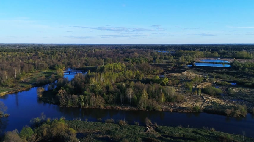 rivulet : Flying above spring forest and lakes under blue sky Stock Footage