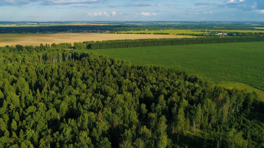 Aerial view of green grassy fields in the summer day with woods and villages