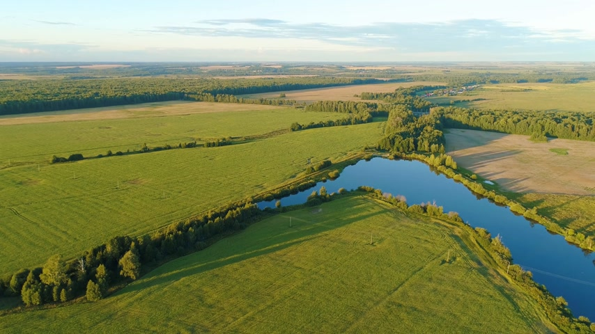 травянистый : Aerial top view of grassy furrowed field. Fertile meadow and pound in sunny day