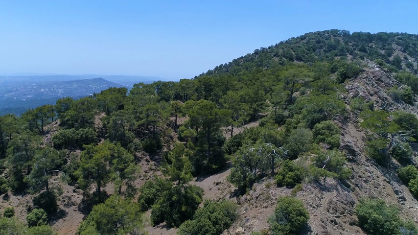 oliwki : Flying Above the Cyprus Mountains and Valleys in a Summer Day. Beautiful Landscape and Rocky Ground Hills with Green Olive Trees. European Greece Outdoor Panorama View