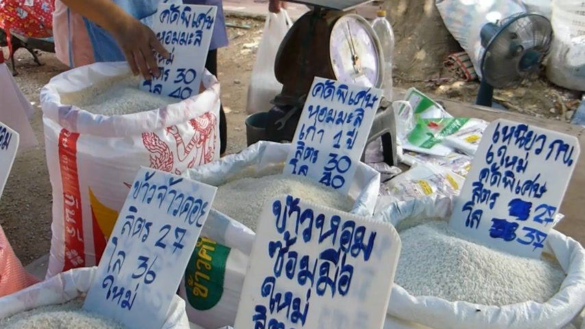 ethic : Stall selling varieties of raw rice & chestnut in a market, Chiangmai, Thailand, (CM--75b) Stall selling varieties of raw rice and chestnut in a market, Chiangmai, Thailand. Chiang Mai has a great selection of markets that delight residents and visitors a