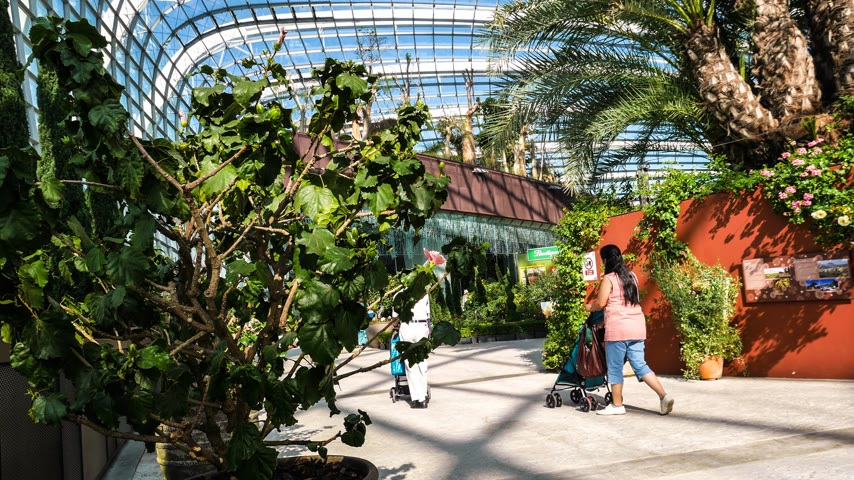 központi : 4k Ultra HD time lapse video of Gardens by the Bay, Singapore (TL-GBTB 6-V2) 4k Ultra HD time lapse video of cool conservatory greenhouse at Gardens by the Bay, Singapore. It is a park spanning 101 hectares (1,010,000 m2) of reclaimed land in central Sing