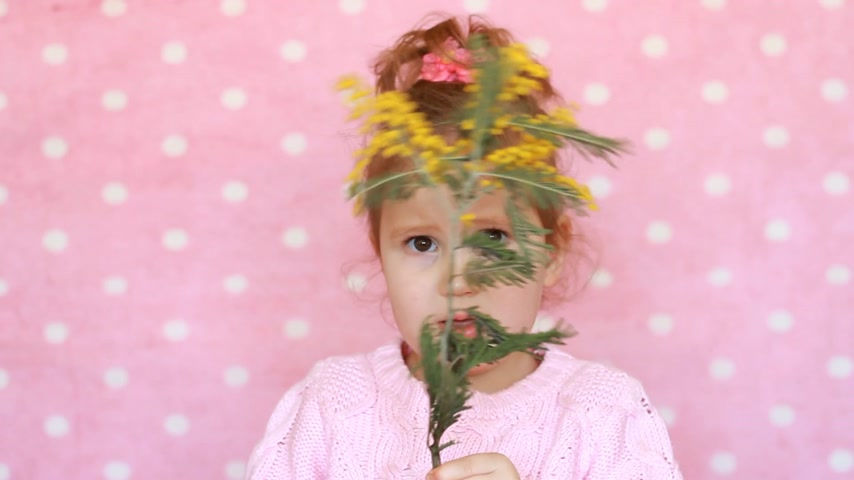 gives : Allergy to pollen of flowers. A happy child smells the scent of a mimosa flower and sneezes. Portrait of a cute little girl on a pink background.