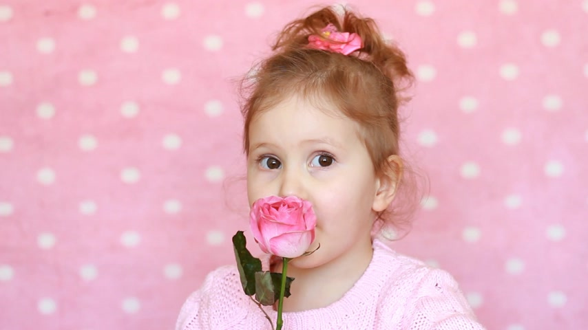 gives : Cute child girl with a rose on a pink background. Portrait happy baby closeup