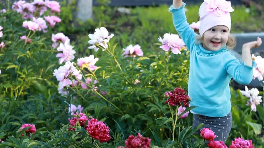 piwonie : Child girl is plaing and dances in the garden with peonies. The concept of happiness and childhood. Wideo