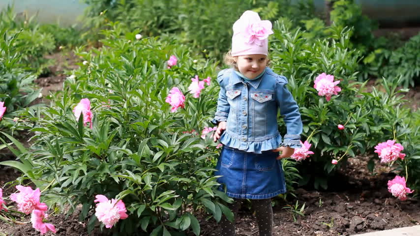 piwonie : Child girl poses for a photo as a model in the garden with peonies. Wideo