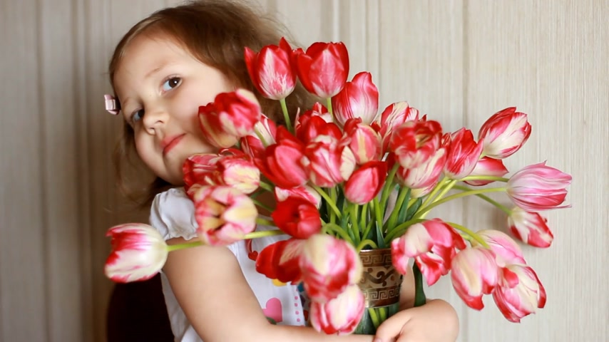 gives : Happy baby girl with a bouquet of red tulips . Child sniffs the scent of a tulip. Concept of birthday and mothers day