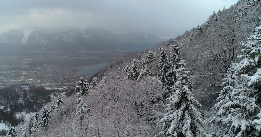 aerial view of forest with snow in the montain with lake in background