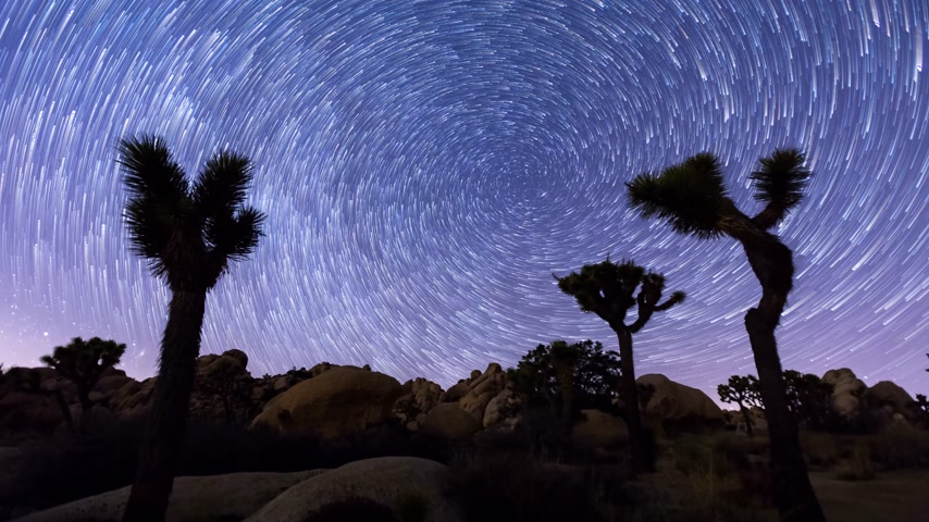 astro : Joshua Trees night with star trails and zoom out effect, Joshua Tree National Park, California