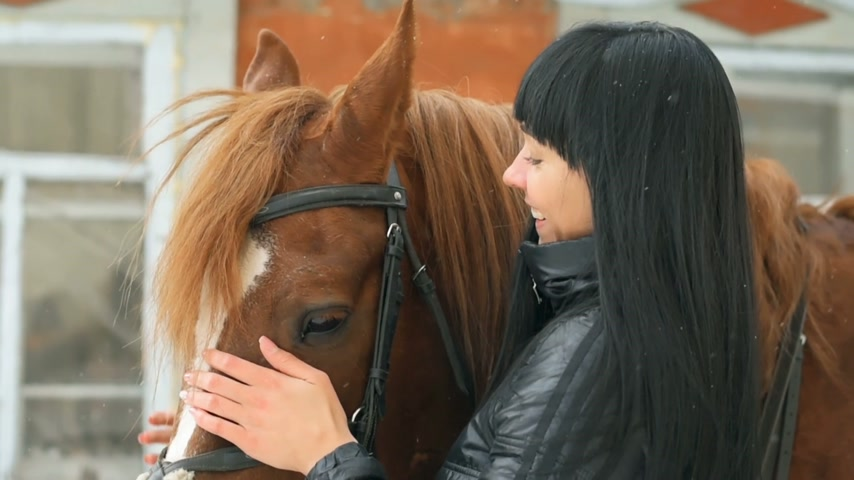 koňmo : Pretty young woman caressing horse.