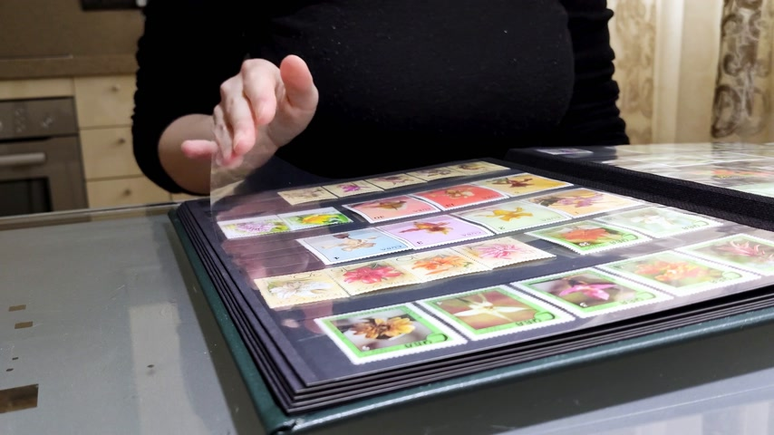kolektor : White girl sits at table in front of open album with collection of postage stamps. Woman in black sweater leafs through book with postmark. Philately hobby. Close-up side view