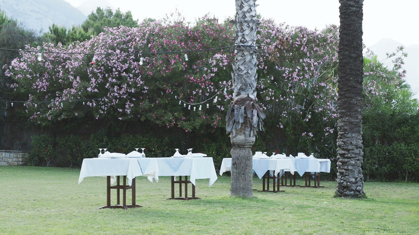 getting ready : Tables, served for dinner on green lawn. Open air mediterranean meal under palms. Dinner on seaside. Stock Footage