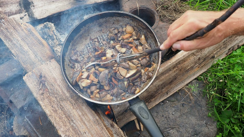 cooks : Cooking mushrooms on frying pan. Summer camping on beach. Kenozero national park, Russia. Stock Footage