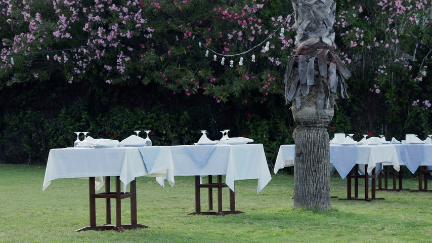 столовые приборы : Tables, served for dinner on green lawn. Open air mediterranean meal under palms. Dinner on seaside. Стоковые видеозаписи