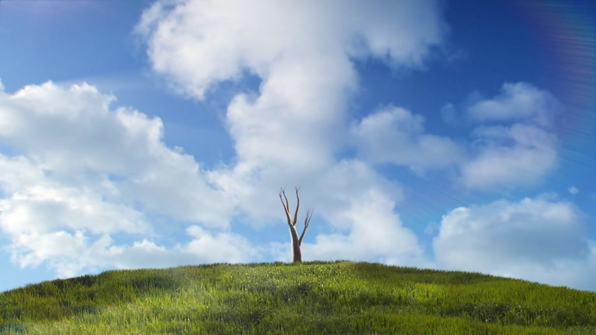 vida : Timelapse of a tree growing on a green hill with blue sky with white fluffy clouds in the background.