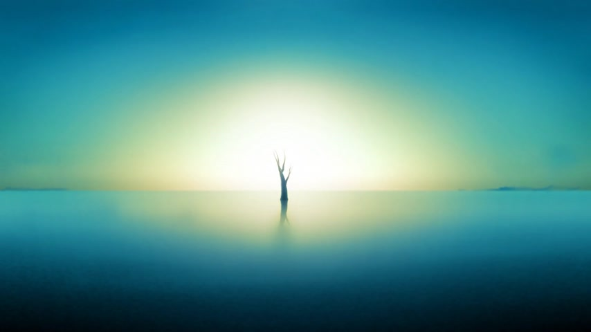 creativity : Timelapse of a  growing tree in a blue landscape.